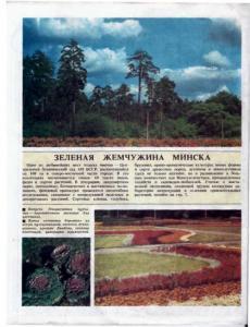 Цветоводство 1991 №05
