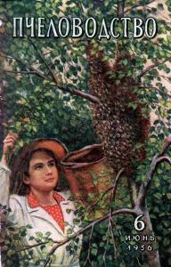 Пчеловодство 1956 №06