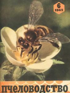 Пчеловодство 1965 №06