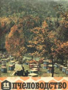 Пчеловодство 1967 №11