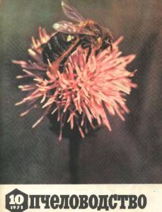 Пчеловодство 1971 №10