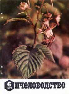 Пчеловодство 1972 №06