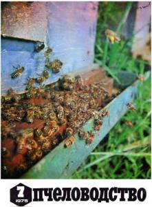 Пчеловодство 1975 №07