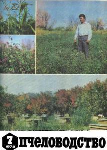 Пчеловодство 1978 №07