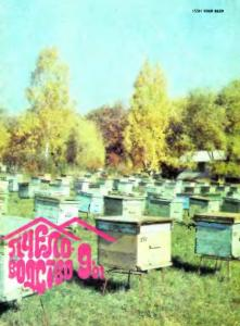 Пчеловодство 1991 №09