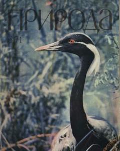Природа 1971 №05