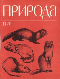 Природа 1975 №11