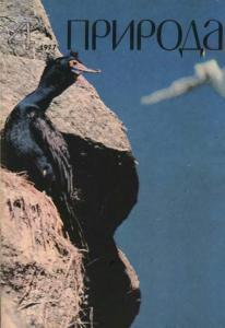 Природа 1977 №04