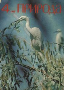 Природа 1980 №04
