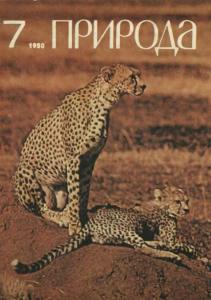 Природа 1980 №07