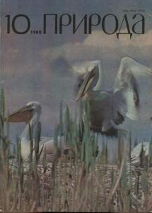 Природа 1980 №10