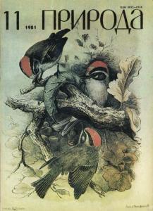 Природа 1981 №11