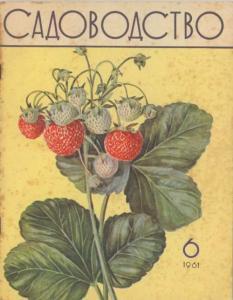 Садоводство 1961 №06