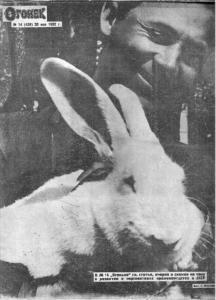 Огонёк 1932 №14