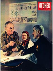 Огонёк 1952 №13
