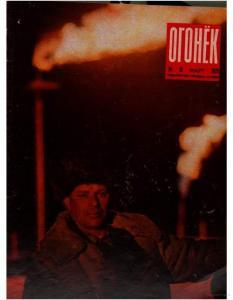 Огонёк 1973 №13