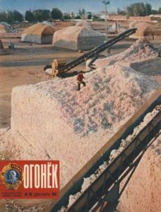 Огонёк 1981 №50