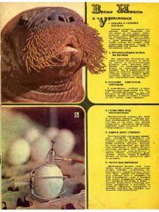 Техника - молодежи 1975 №11