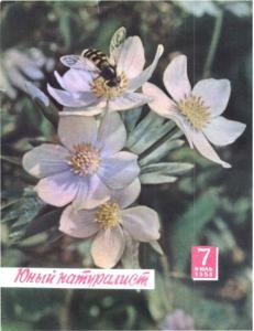 Юный натуралист 1958 №07