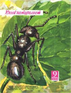 Юный натуралист 1958 №09