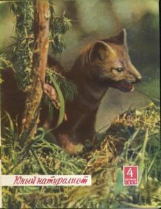 Юный натуралист 1959 №04