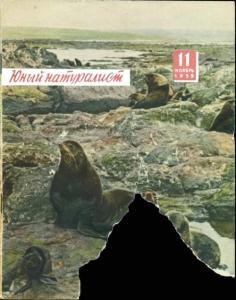 Юный натуралист 1959 №11