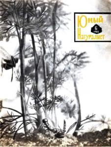 Юный натуралист 1965 №06