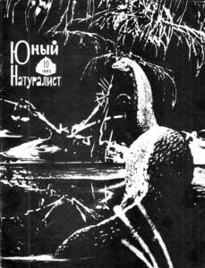 Юный натуралист 1965 №10