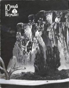 Юный натуралист 1966 №10