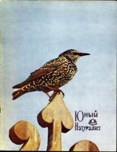 Юный натуралист 1967 №04