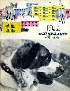 Юный натуралист 1967 №12