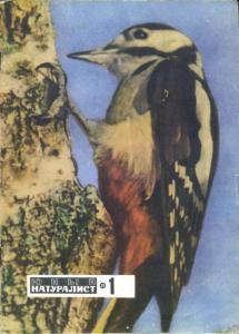 Юный натуралист 1969 №01