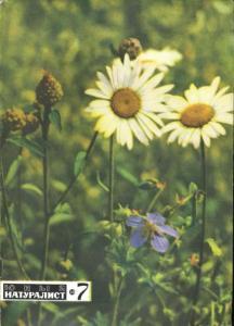 Юный натуралист 1969 №07