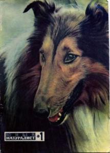 Юный натуралист 1970 №01