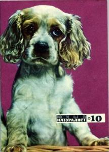 Юный натуралист 1971 №10