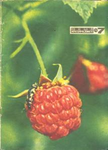Юный натуралист 1973 №07