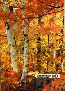 Юный натуралист 1973 №10