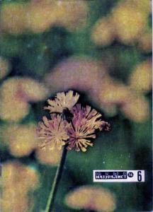 Юный натуралист 1974 №06