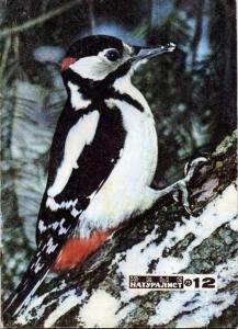 Юный натуралист 1975 №12