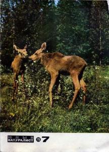 Юный натуралист 1976 №07
