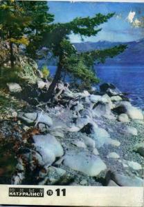 Юный натуралист 1976 №11
