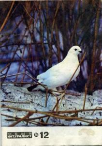 Юный натуралист 1976 №12