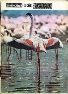 Юный натуралист 1977 №03