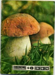 Юный натуралист 1977 №08