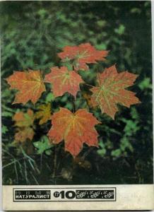Юный натуралист 1977 №10