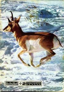 Юный натуралист 1978 №02