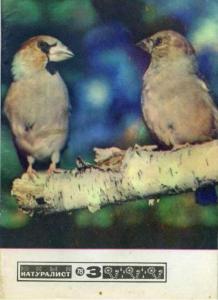 Юный натуралист 1978 №03
