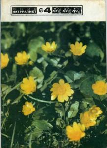 Юный натуралист 1978 №04