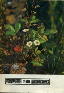 Юный натуралист 1978 №06