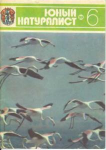 Юный натуралист 1980 №06